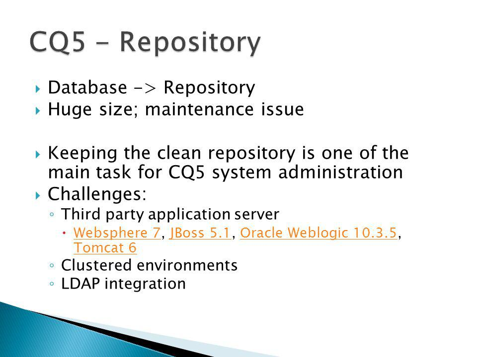 CQ5 - Repository Database -> Repository