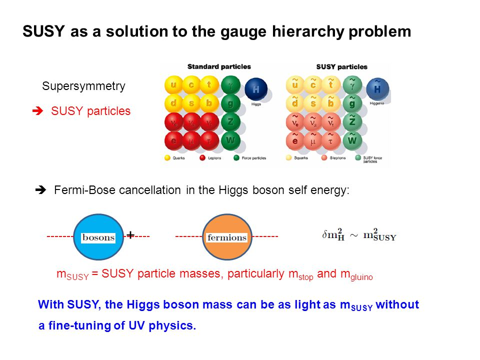 SUSY as a solution to the gauge hierarchy problem