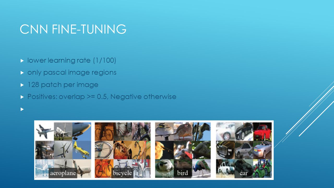 Cnn fine-tuning lower learning rate (1/100) only pascal image regions