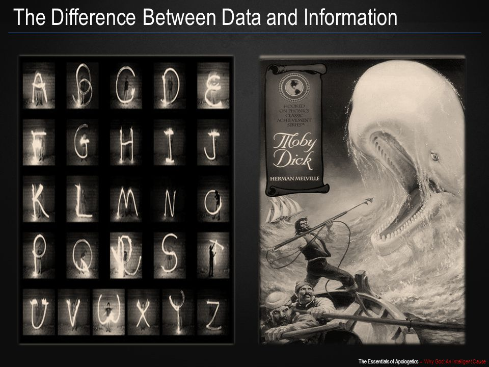 The Difference Between Data and Information