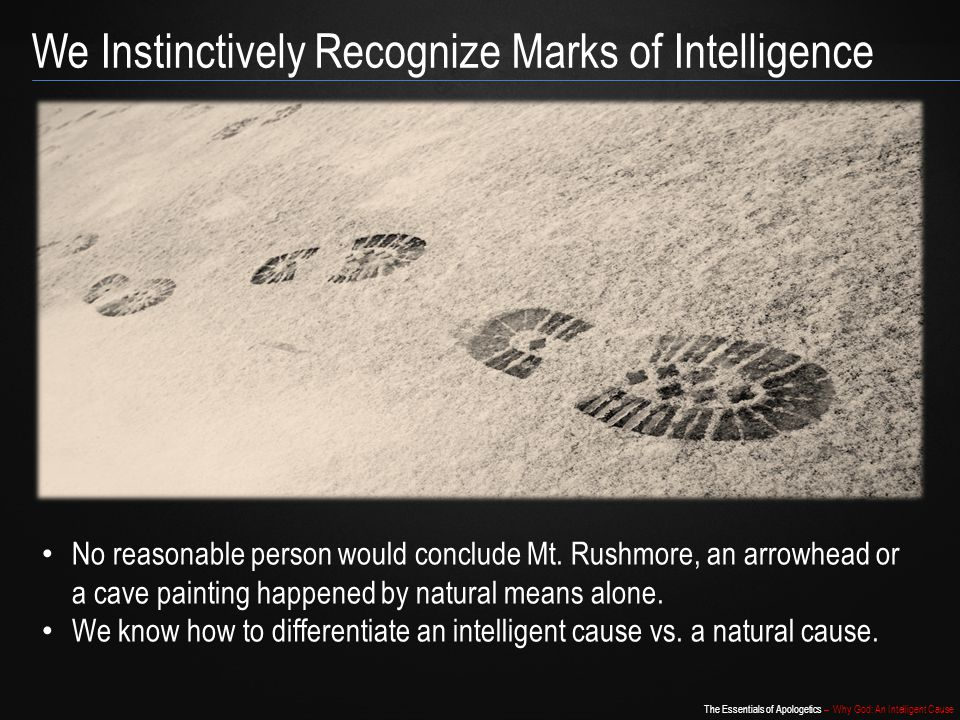 We Instinctively Recognize Marks of Intelligence