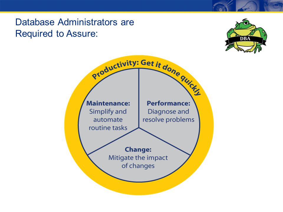 Database Administrators are Required to Assure:
