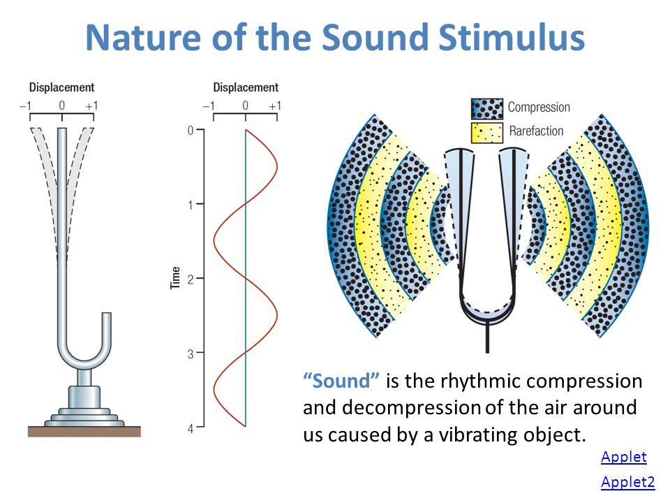 Nature of the Sound Stimulus