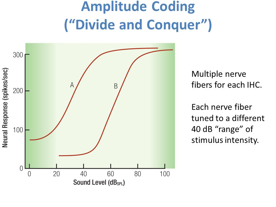 Amplitude Coding ( Divide and Conquer )
