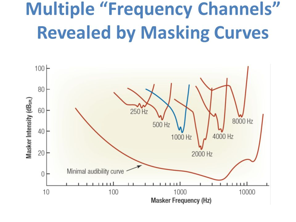 Multiple Frequency Channels Revealed by Masking Curves