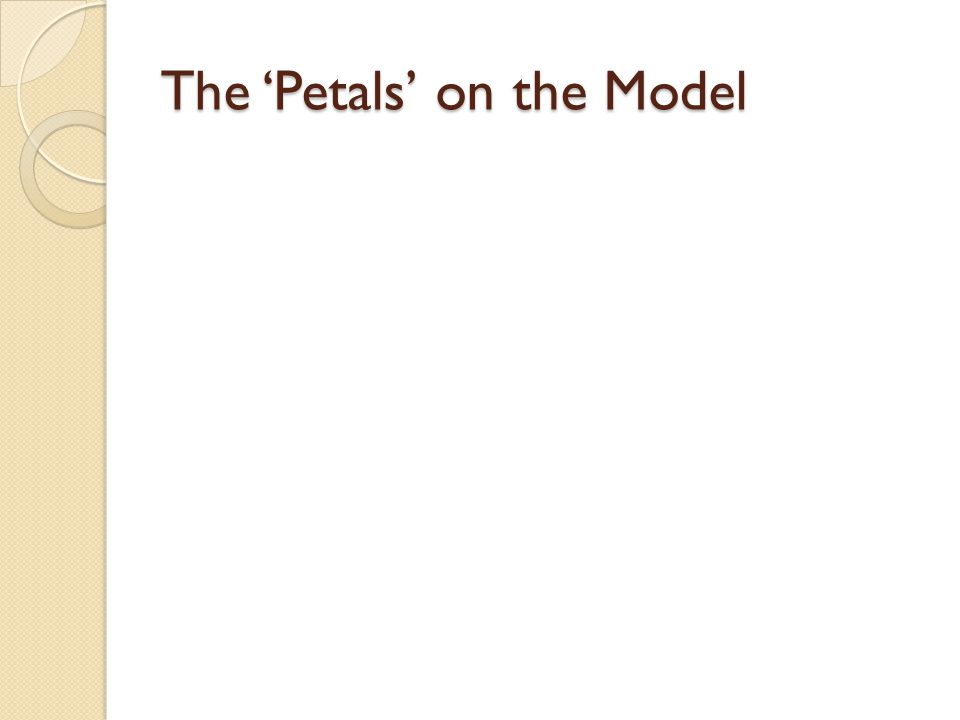 The 'Petals' on the Model