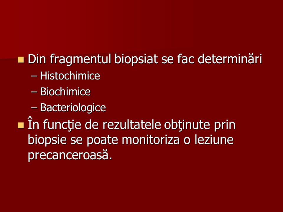 Din fragmentul biopsiat se fac determinări
