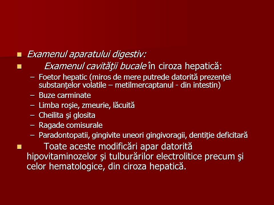 Examenul aparatului digestiv:
