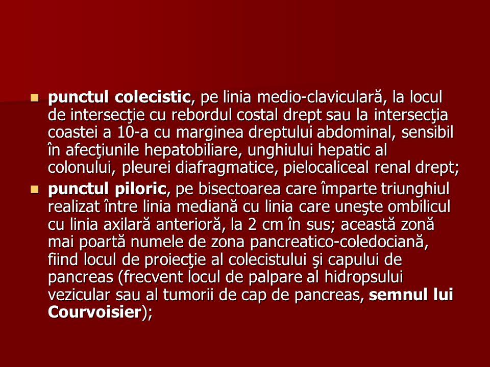 punctul colecistic, pe linia medio-claviculară, la locul de intersecţie cu rebordul costal drept sau la intersecţia coastei a 10-a cu marginea dreptului abdominal, sensibil în afecţiunile hepatobiliare, unghiului hepatic al colonului, pleurei diafragmatice, pielocaliceal renal drept;