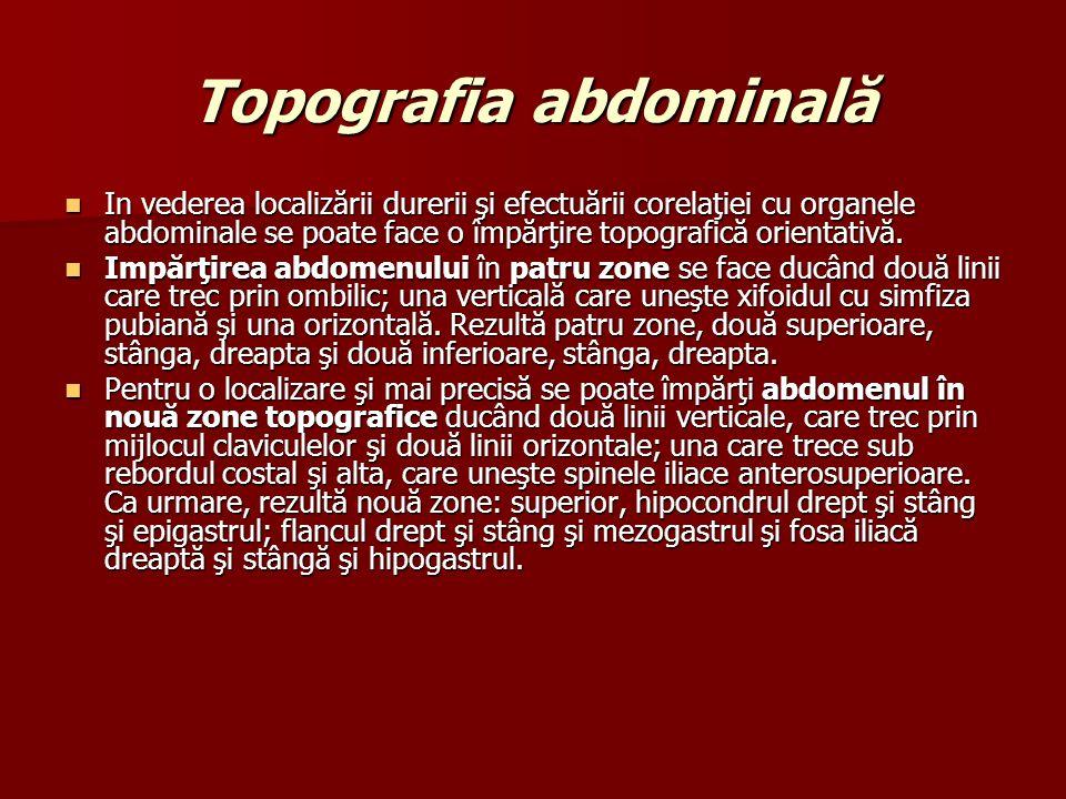 Topografia abdominală