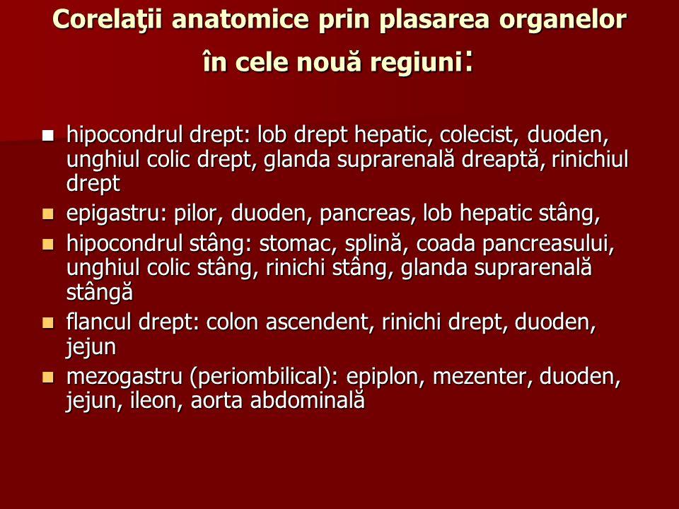 Corelaţii anatomice prin plasarea organelor în cele nouă regiuni: