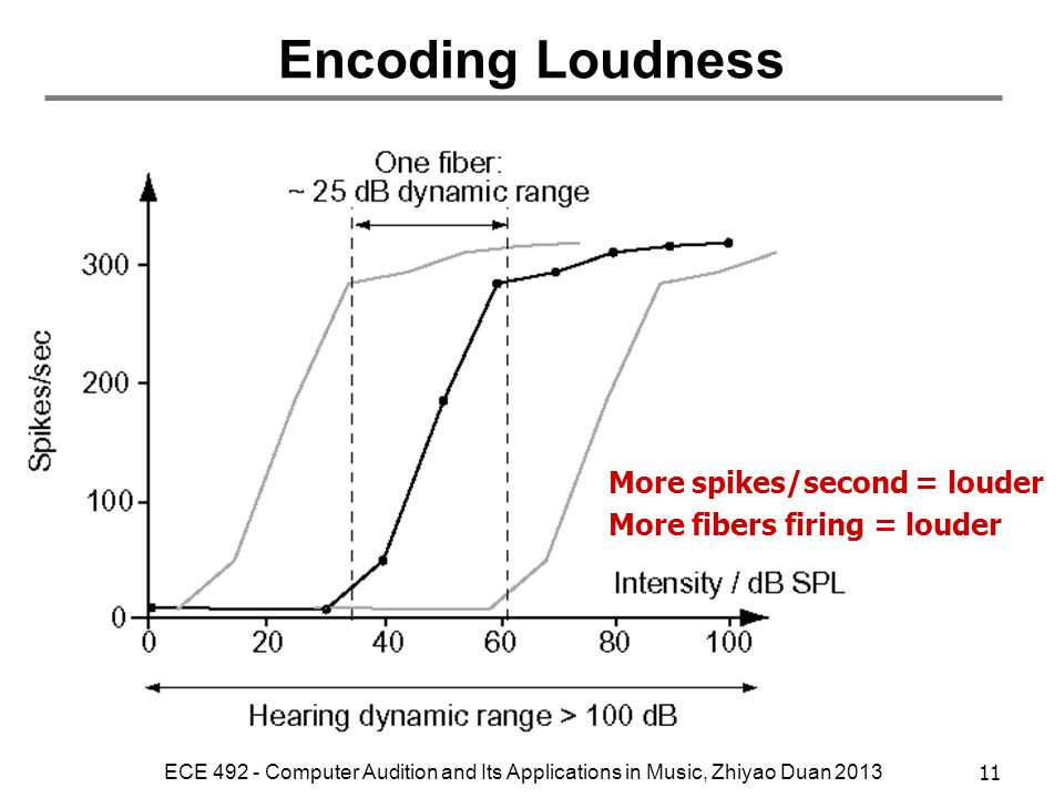 Encoding Loudness More spikes/second = louder