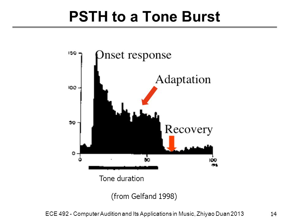 PSTH to a Tone Burst Tone duration (from Gelfand 1998)