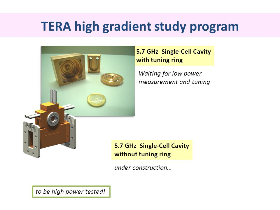TERA high gradient study program