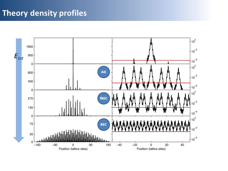 Theory density profiles