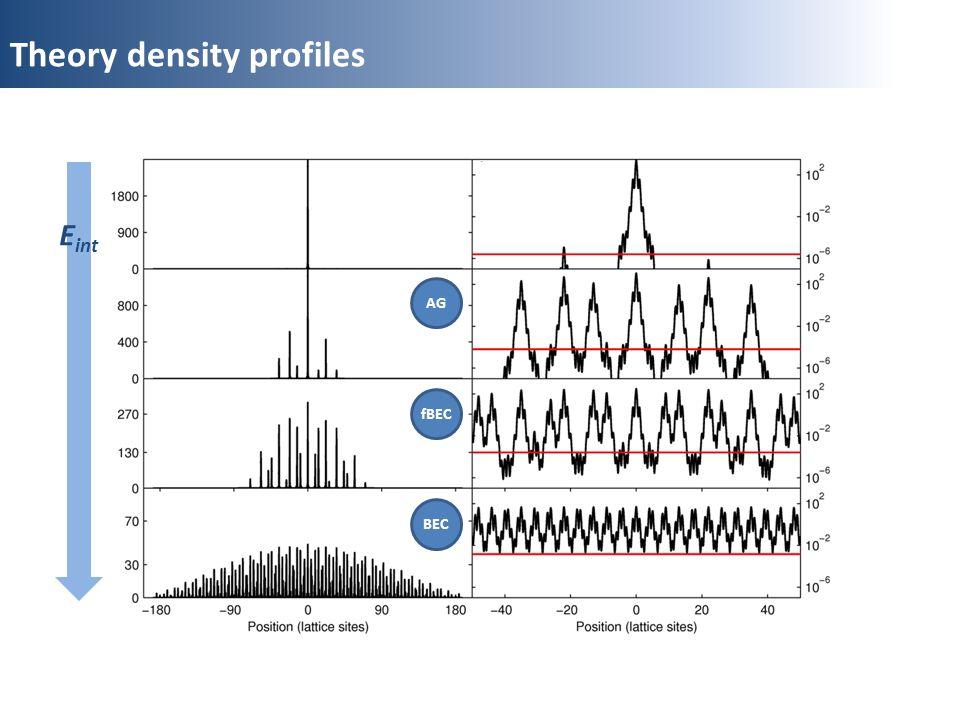 Theory density profiles