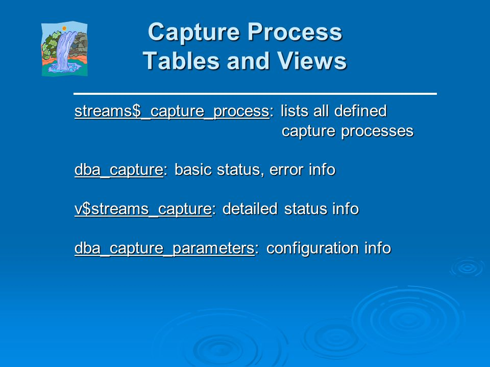 Capture Process Tables and Views