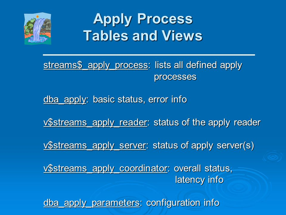 Apply Process Tables and Views
