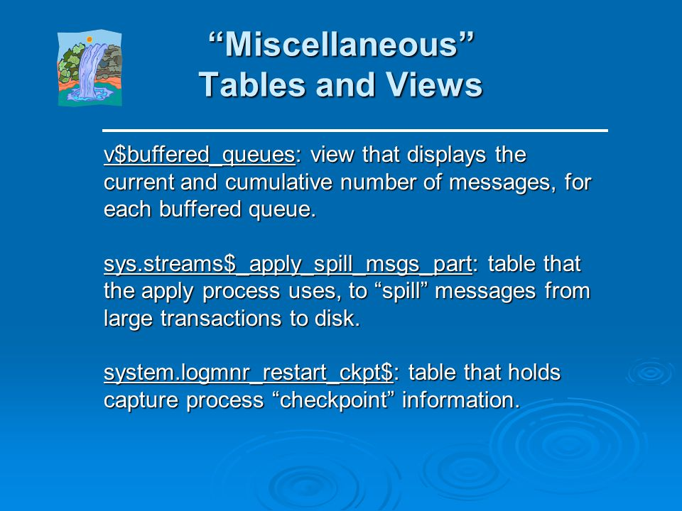 Miscellaneous Tables and Views