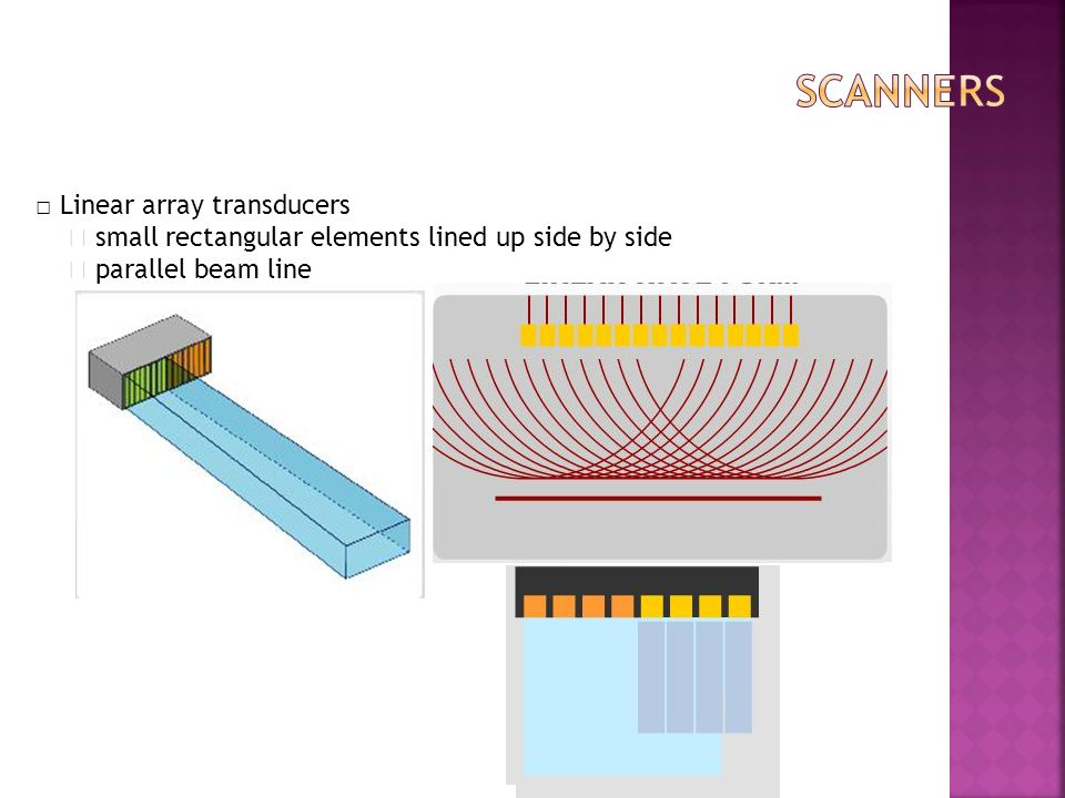 scanners □ Linear array transducers