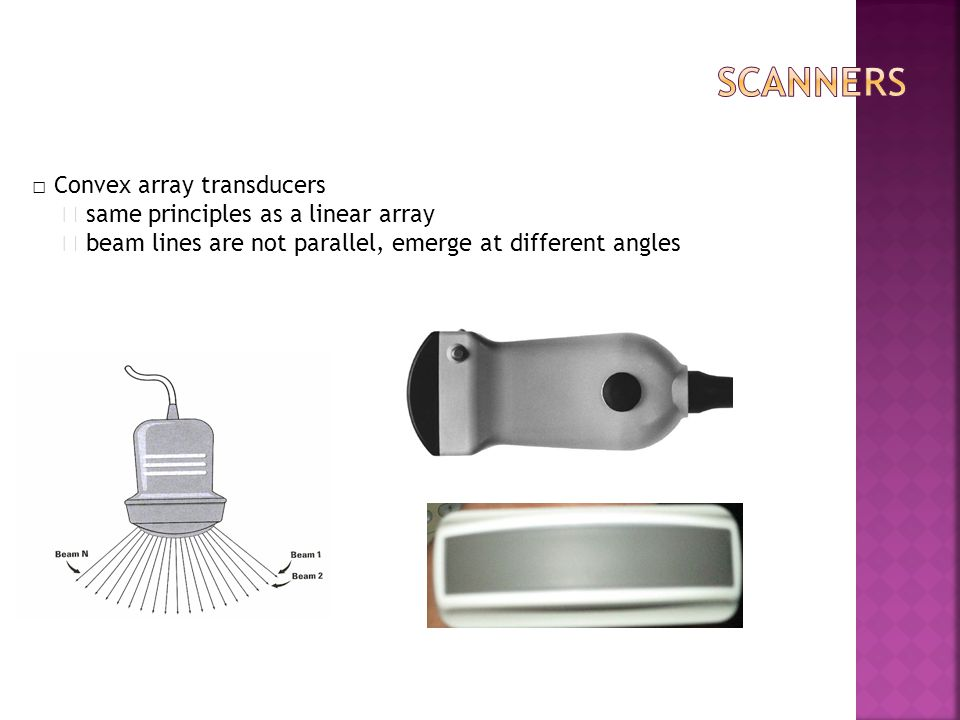 scanners □ Convex array transducers