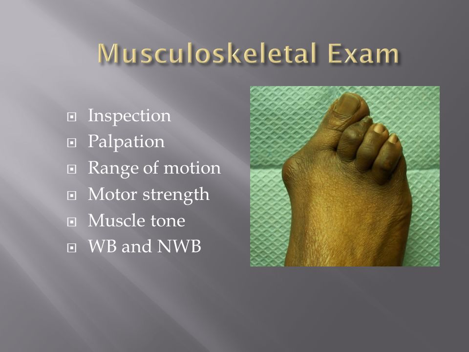Musculoskeletal Exam Inspection Palpation Range of motion