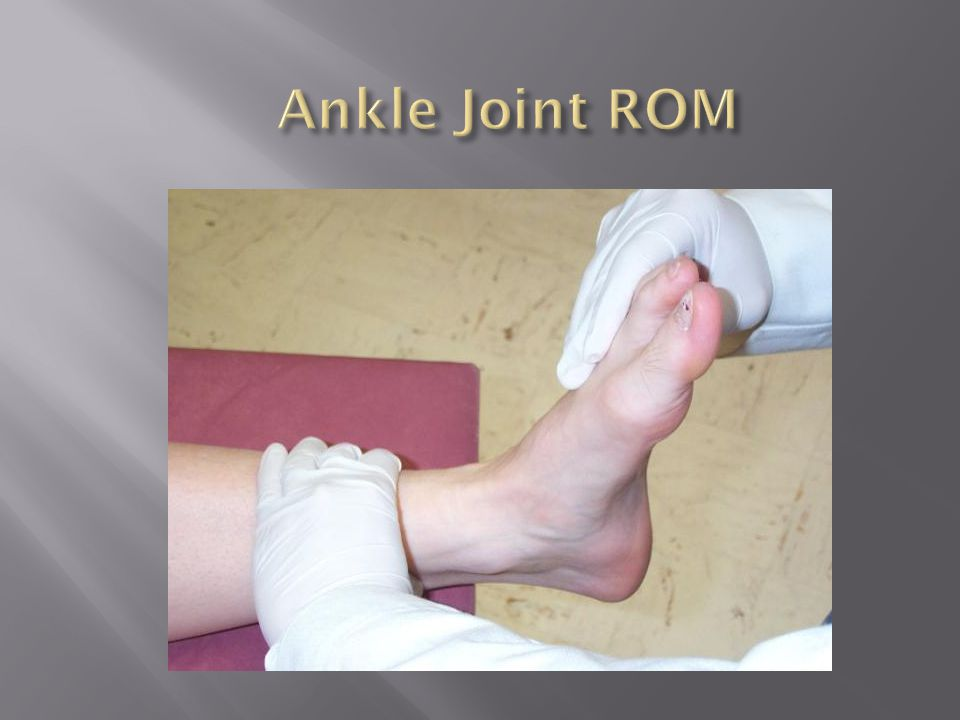 Ankle Joint ROM