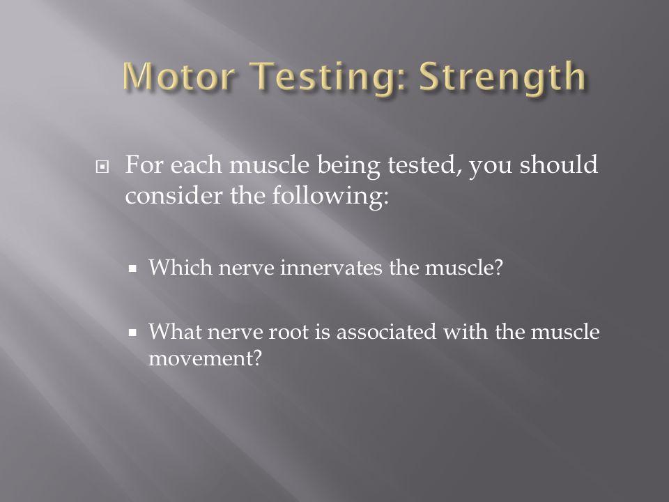 Motor Testing: Strength