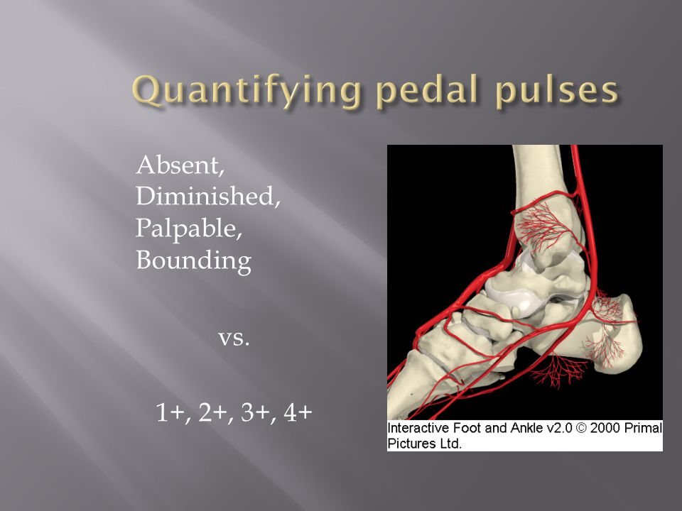 Quantifying pedal pulses