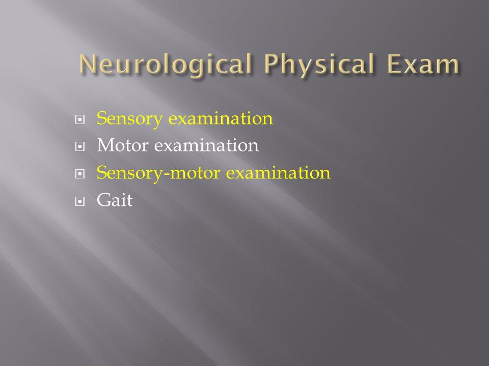 Neurological Physical Exam