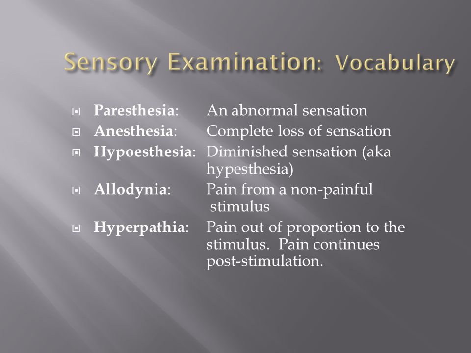 Sensory Examination: Vocabulary