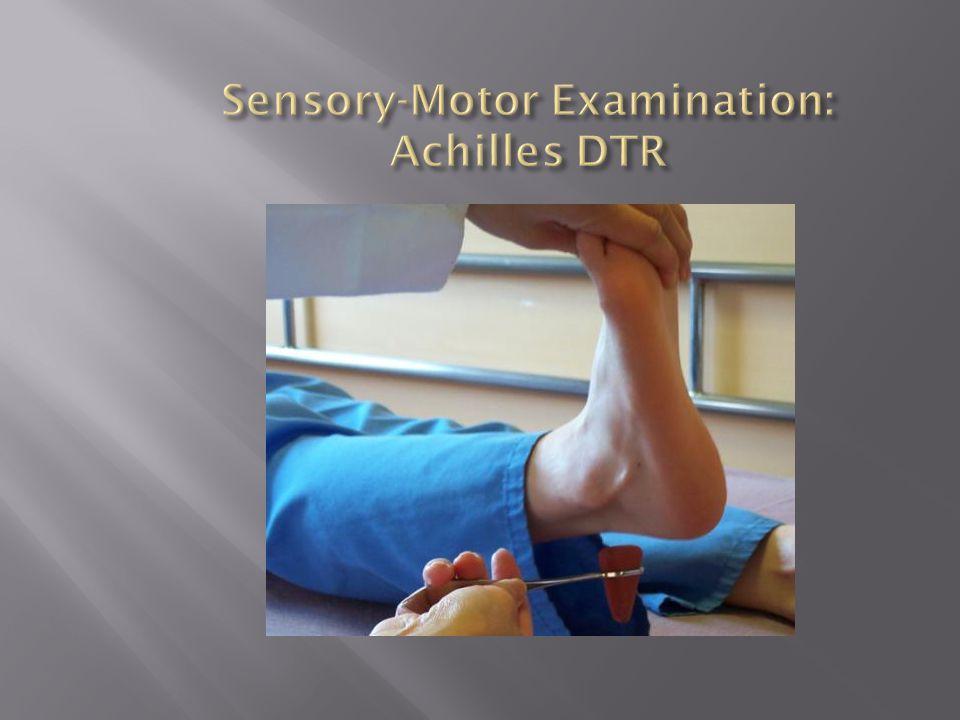 Sensory-Motor Examination: Achilles DTR