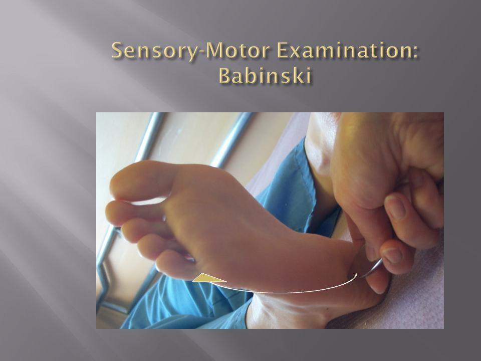 Sensory-Motor Examination: Babinski
