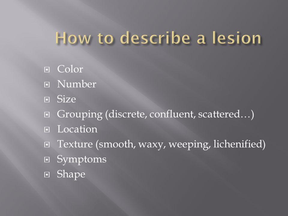 How to describe a lesion