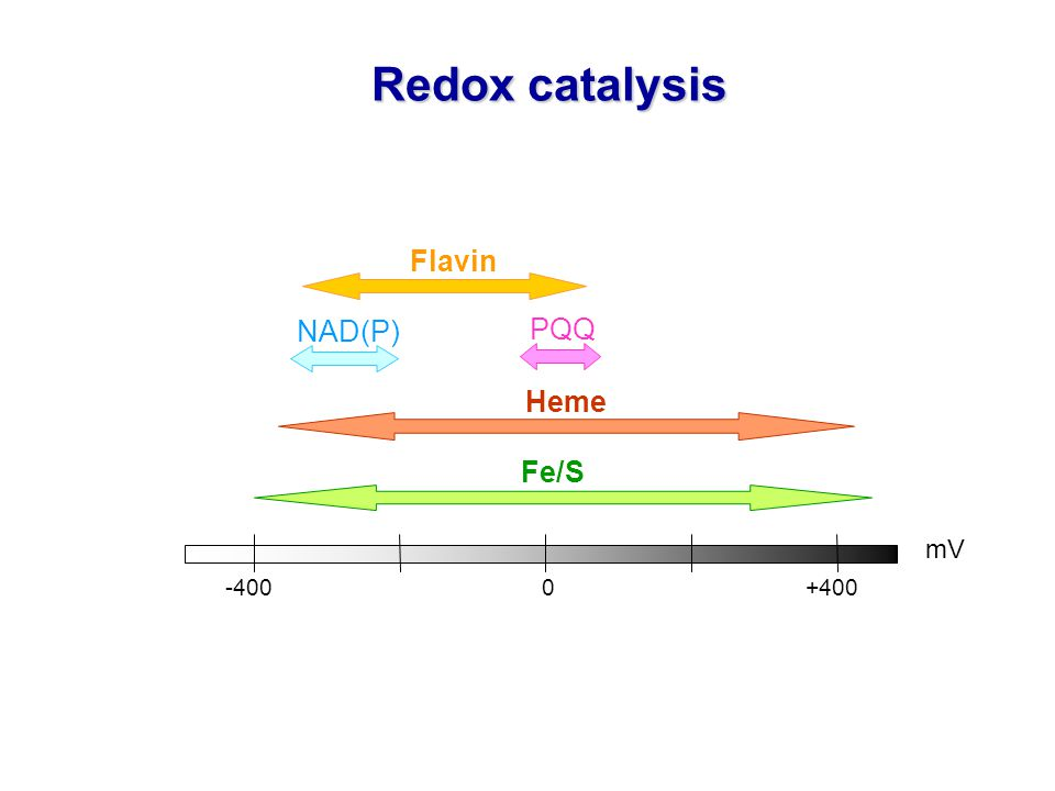 Redox catalysis Flavin NAD(P) PQQ Heme Fe/S mV -400 0 +400