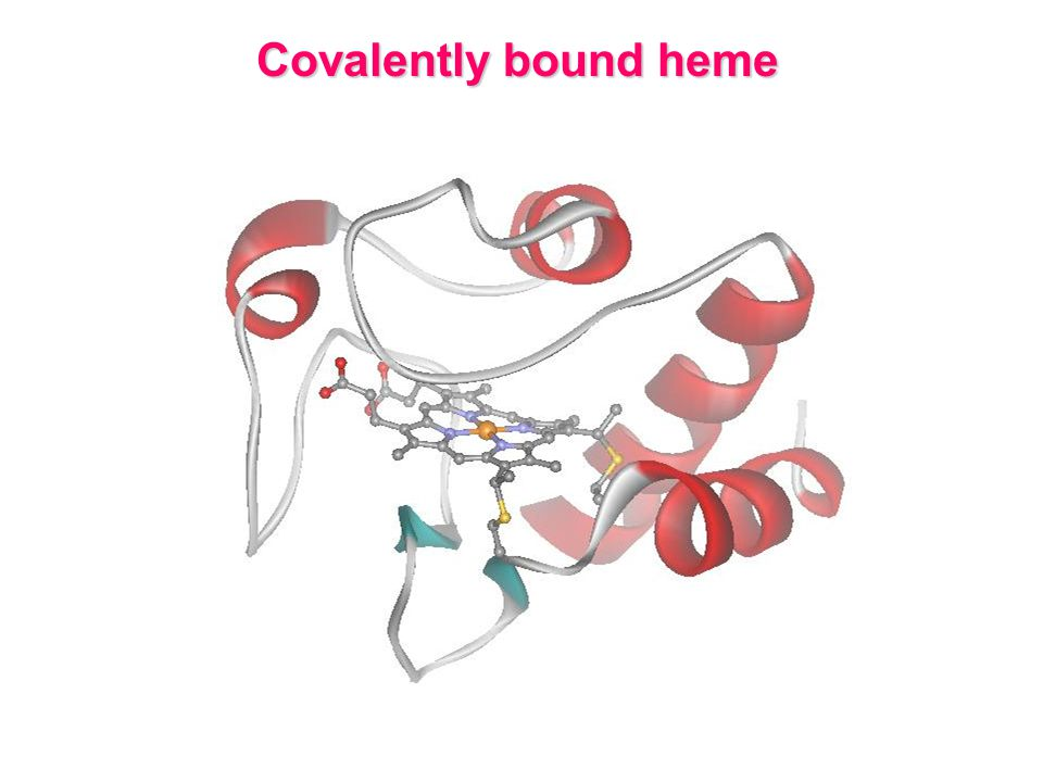 Covalently bound heme