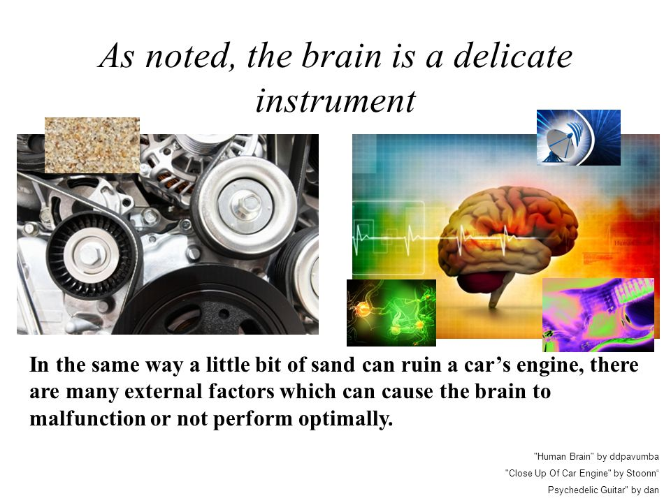 As noted, the brain is a delicate instrument
