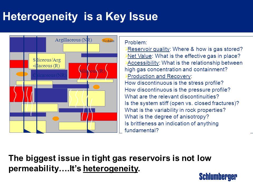 Heterogeneity is a Key Issue