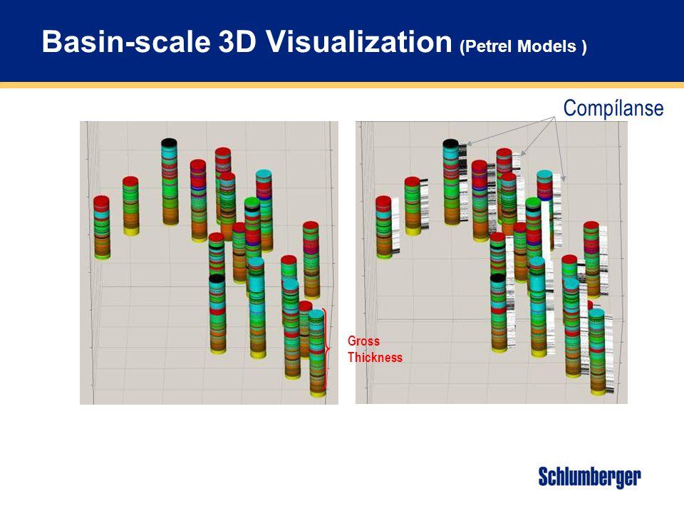 Basin-scale 3D Visualization (Petrel Models )