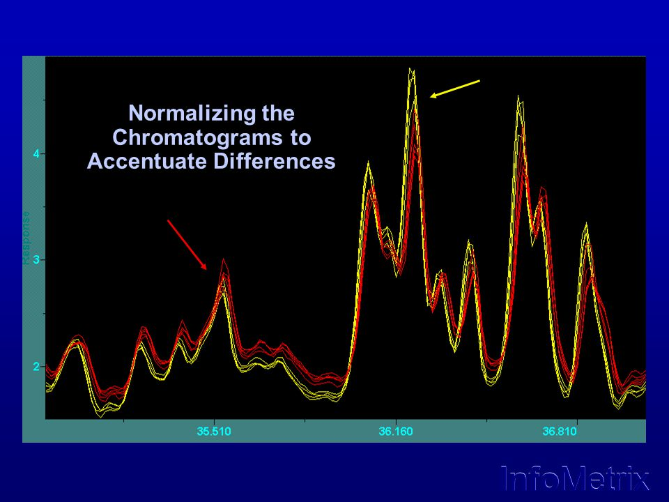 Normalizing the Chromatograms to Accentuate Differences