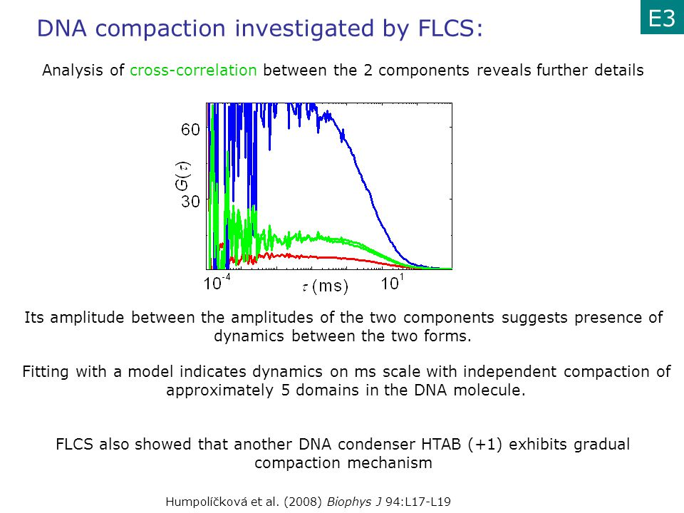 DNA compaction investigated by FLCS: