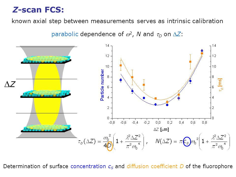 Z-scan FCS: known axial step between measurements serves as intrinsic calibration. parabolic dependence of w2, N and tD on DZ: