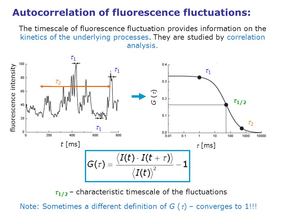 Autocorrelation of fluorescence fluctuations: