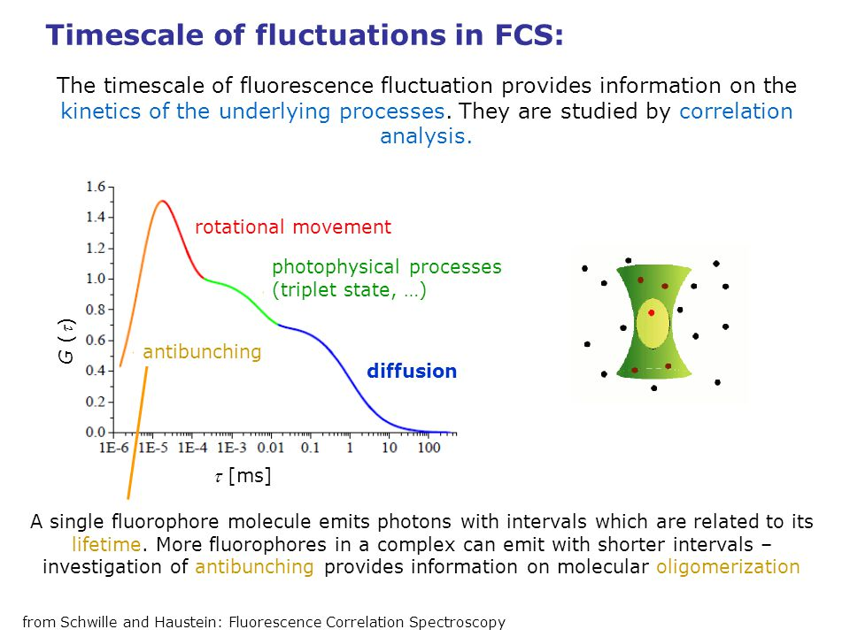 Timescale of fluctuations in FCS: