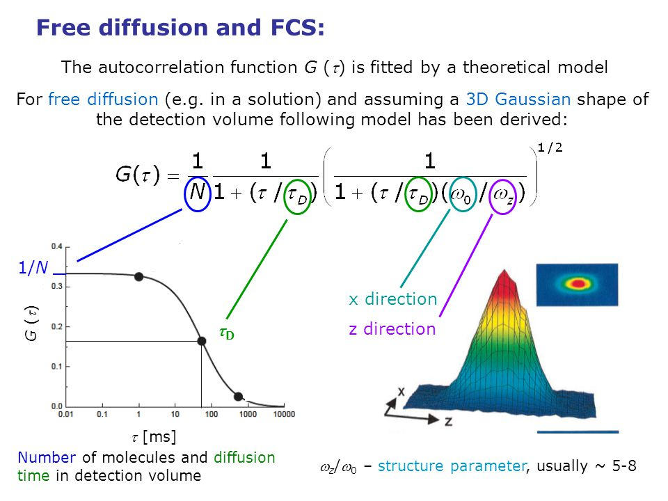 Free diffusion and FCS: