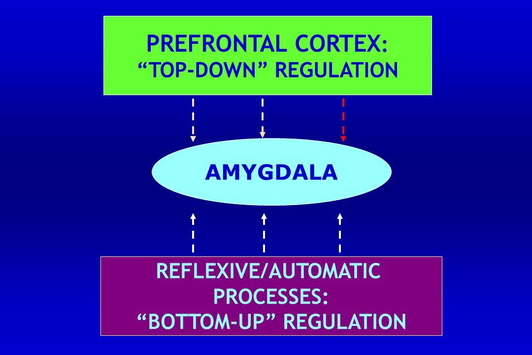 TOP-DOWN REGULATION BOTTOM-UP REGULATION