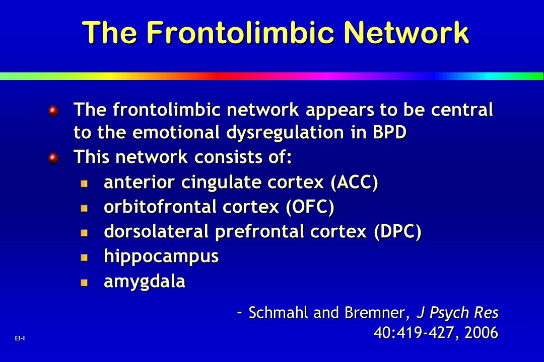 The Frontolimbic Network
