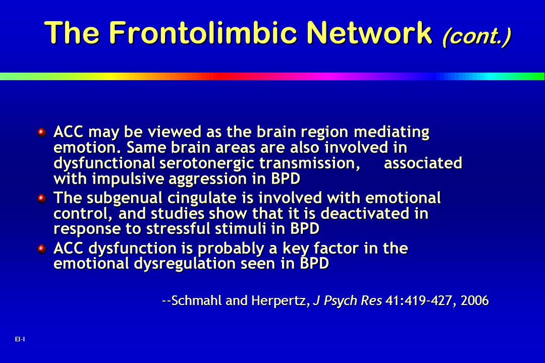 The Frontolimbic Network (cont.)