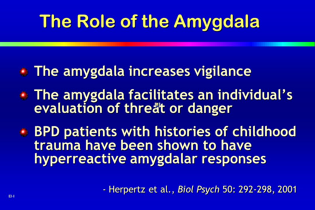 The Role of the Amygdala