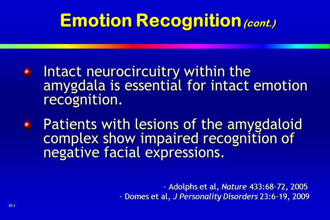 Emotion Recognition (cont.)